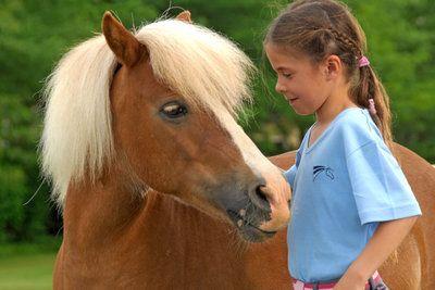 slem club equestre montbrison therapie equestre poney club. Black Bedroom Furniture Sets. Home Design Ideas
